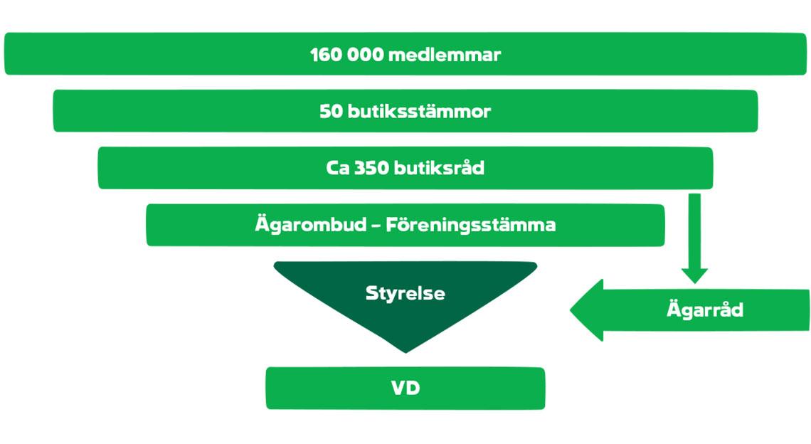 organisation_170109
